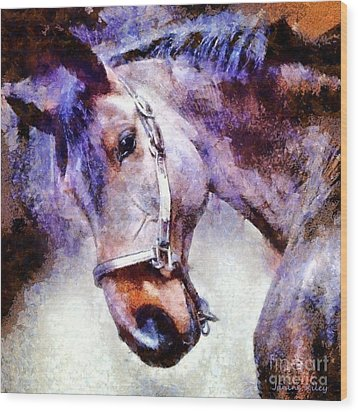 Horse I Will Follow You Wood Print by Janine Riley