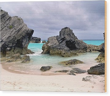 Horseshoe Beach In Bermuda Wood Print by Janice Drew