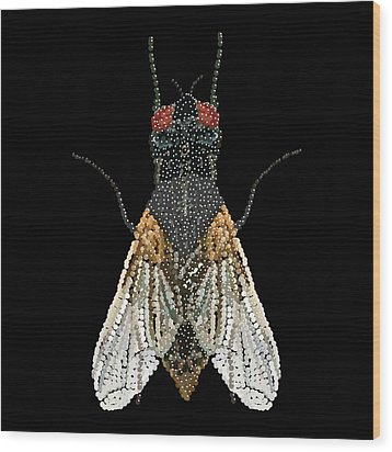 House Fly Bedazzled Wood Print by R  Allen Swezey