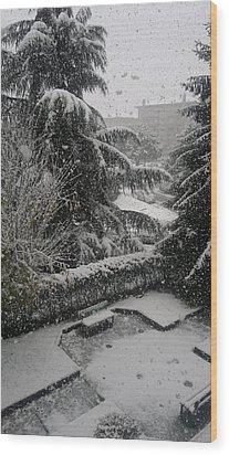 Huge Snowflakes Wood Print by Giuseppe Epifani