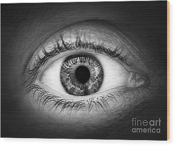 Human Eye Wood Print by Elena Elisseeva