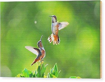 Hummingbird Dance  Wood Print by Lynn Bauer