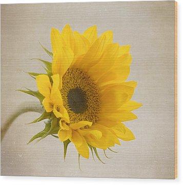 I See Sunshine Wood Print by Kim Hojnacki
