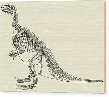 Iguanodon Wood Print by English School