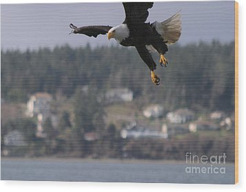 I'm Coming In For A Landing Wood Print by Kym Backland