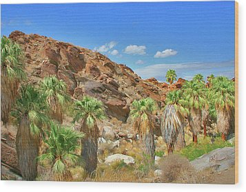 Indian Canyons View In Palm Springs Wood Print by Ben and Raisa Gertsberg