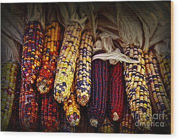Indian Corn Wood Print by Elena Elisseeva