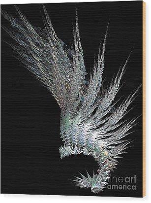 Indian Feather Head Dress Wood Print by Gail Matthews
