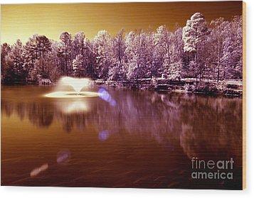 Infrared Study #242 Wood Print by Floyd Menezes
