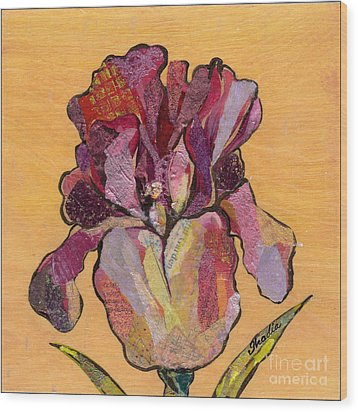 Iris V  - Series V Wood Print by Shadia Derbyshire