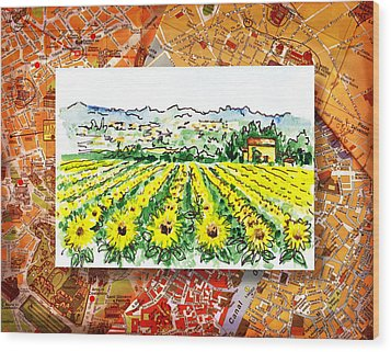 Italy Sketches Sunflowers Of Tuscany Wood Print by Irina Sztukowski