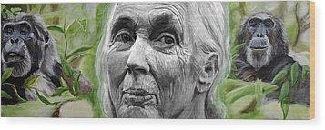 Jane Goodall Wood Print by Simon Kregar