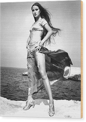 Jane Seymour In Sinbad And The Eye Of The Tiger  Wood Print by Silver Screen