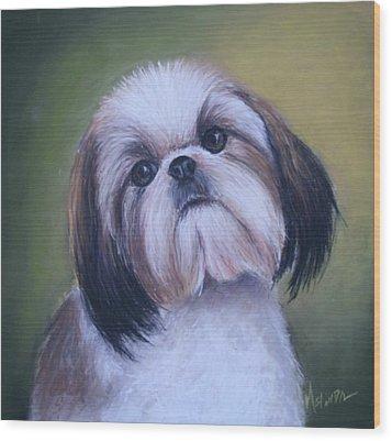 Jenny Wren Shih Tzu Puppy Wood Print by Melinda Saminski