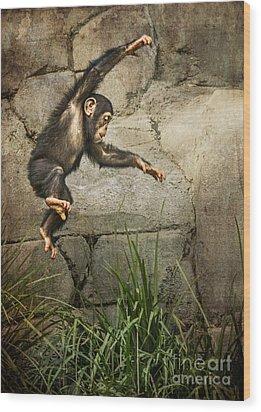 Jump For Joy Wood Print by Jamie Pham