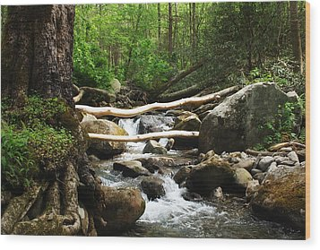 Just Outside Of Gatlinburg Wood Print by Mountain Dreams