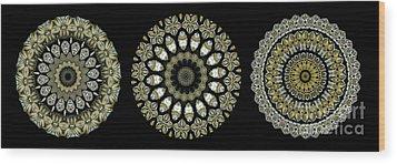 Kaleidoscope Ernst Haeckl Sea Life Series Steampunk Feel Triptyc Wood Print by Amy Cicconi
