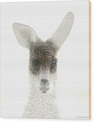 Kangaroo Wood Print by Holly Kempe