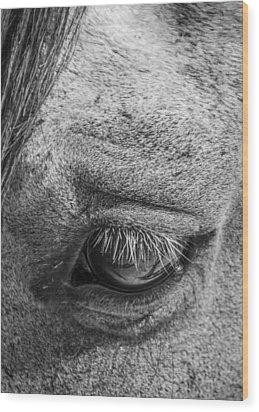 Kind Eye Wood Print by Dianne Arrigoni