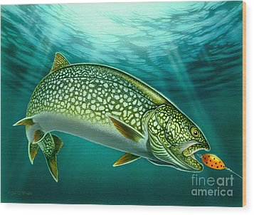 Lake Trout And Spoon Wood Print by Jon Q Wright