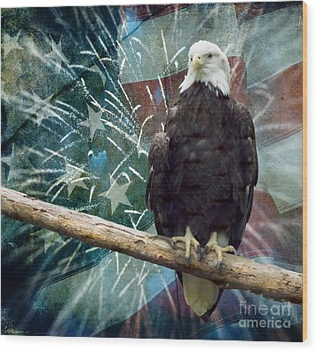 Land Of The Free Wood Print by Terry Weaver