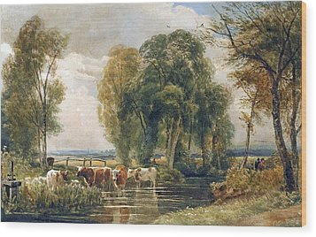 Landscape Cattle In A Stream With Sluice Gate Wood Print by Peter de Wint