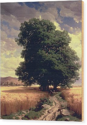 Landscape With Oaks Wood Print by Alexandre Calame