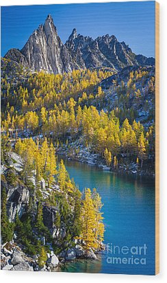 Larches At Perfection Lake Wood Print by Inge Johnsson