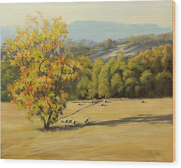 Last Rays Wood Print by Karen Ilari