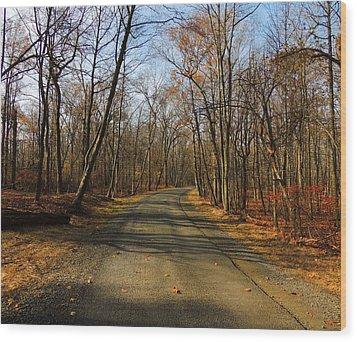 Late Fall At Cheesequake State Park Wood Print by Raymond Salani III