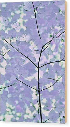 Lavender Blues Leaves Melody Wood Print by Jennie Marie Schell