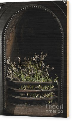 Lavender Fire Wood Print by Anne Gilbert