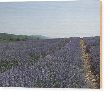 Lavender Sky Wood Print by Pema Hou