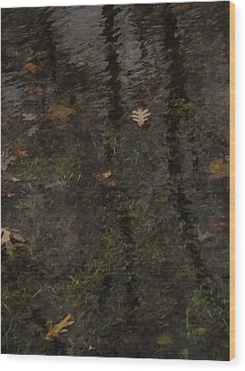 Leaves In The Waves Wood Print by Guy Ricketts