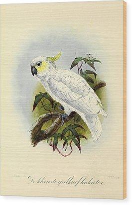 Lesser Cockatoo Wood Print by J G Keulemans
