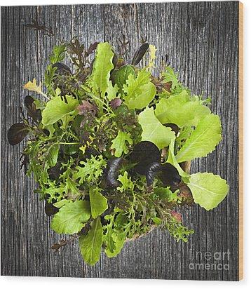 Lettuce Seedlings Wood Print by Elena Elisseeva