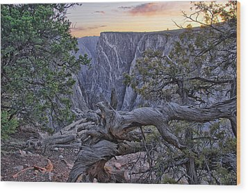 Life And Death At Painted Wall Wood Print by Eric Rundle