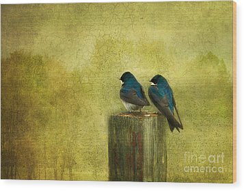 Life Long Friends Wood Print by Beve Brown-Clark Photography