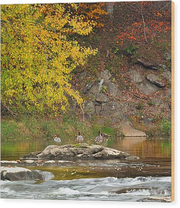 Life On The River Square Wood Print by Bill Wakeley