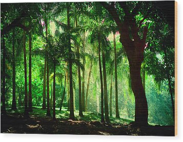 Light In The Jungles. Viridian Greens. Mauritius Wood Print by Jenny Rainbow