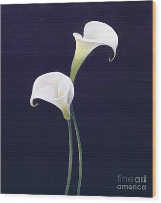 Lily Wood Print by Lincoln Seligman