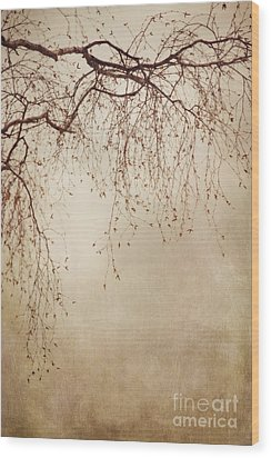 Listen Closely  Wood Print by Priska Wettstein