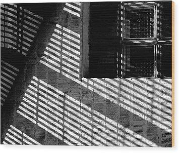 Long Shadows Wood Print by Steven Milner