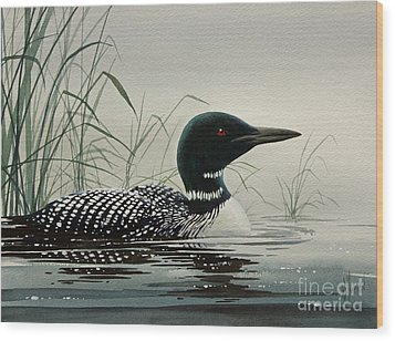 Loon Near The Shore Wood Print by James Williamson
