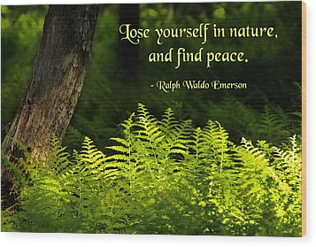 Lose Yourself In Nature Wood Print by Mike Flynn