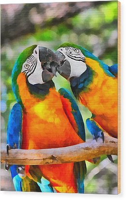 Love Bites - Parrots In Silver Springs Wood Print by Christine Till