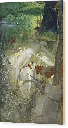 Love Nymph Wood Print by Anders Zorn