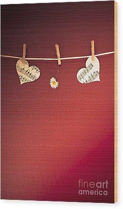 Love On The Line Wood Print by Jan Bickerton