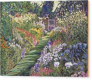 Lush Floral Pathway Wood Print by David Lloyd Glover