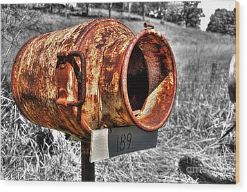 Mailbox With Character Wood Print by Kaye Menner